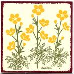 Yellow Buttercups Tile Wall Plaque, Trivet